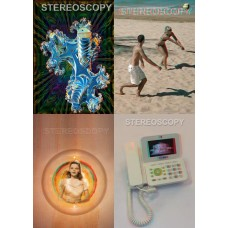 Stereoscopy 2009 (4 issues, #77-80)