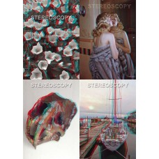 Stereoscopy 2010 (4 issues, #81-84)