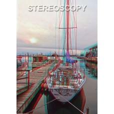 Stereoscopy # 84 (Issue 4.2010)