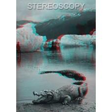 Stereoscopy # 93 (Issue 1.2013)