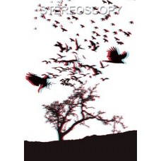 Stereoscopy # 98 (Issue 2.2014)