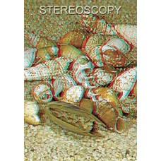 Stereoscopy # 99 (Issue 3.2014)
